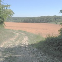 Paysage de Seine et Marne