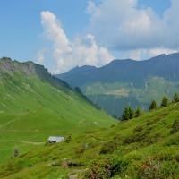 Haute Savoie (427)